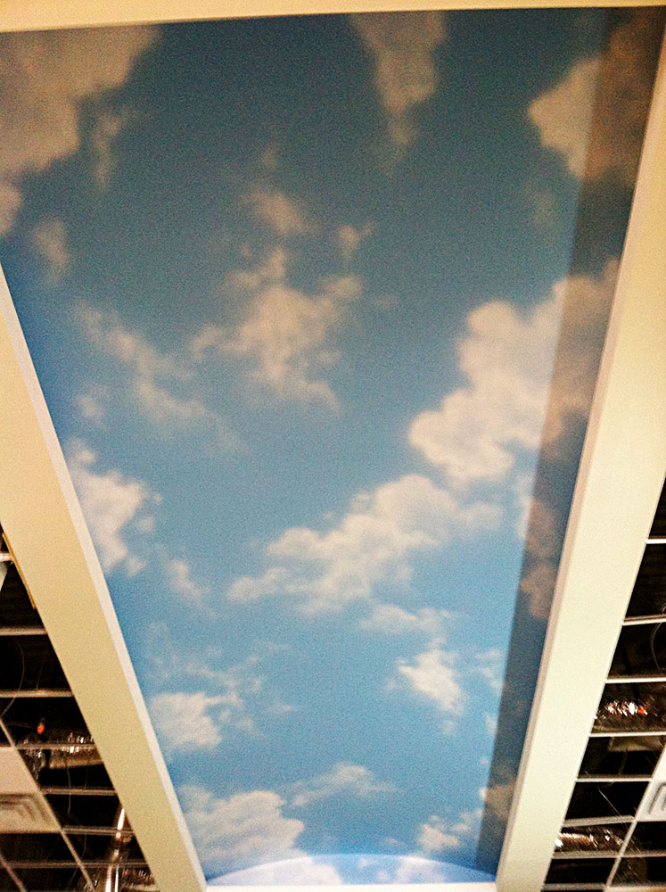 Ceilings custom murals in houston murals and for Ceiling sky mural