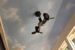 Patio-ceiling-backyard