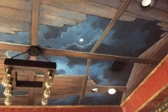 Ceiling 09 - Cloudy Night