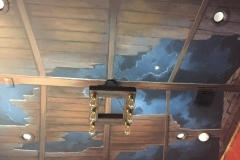 Ceiling 10 - Cloudy Night