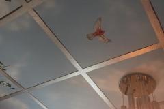 Ceiling 11 - Blue sky