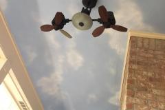 patio-ceiling2