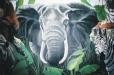 Elephant. Child's room mural. Safari theme