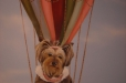 Child's room mural. Hot air balloon with client's pet