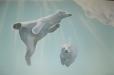 FINS, Indoor Swimming. Spring, TX. Polar Bears
