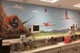 hospital-safari10