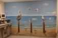 c-hospital-beach