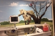 hospital-safari12