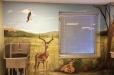 hospital-safari3