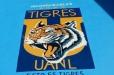 pool-mural-Tigres